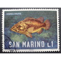 Сан-Марино 1966 рыба