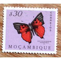 Бабочка, Мозамбик