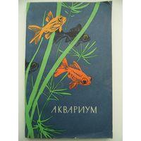 Г.И. Куровский Аквариум 1965 год
