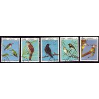 Куба 1977. Кубинские птицы. /Фауна. Полная серия.