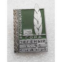 Зеленый Пояс Славы. Румболовская гора. ВОВ #0163-WP4