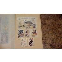 Птицы, фауна,  марки и блок, Гайана