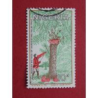 Нигерия. Флора.