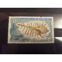 1975 Французкая колония Территория Афаров и Иссу фауна раковина выпускалась одиночкой догая не рядовая легкое повреждение уценка (5-7)