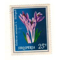 Албания. Цветок. 1 марка