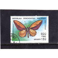 Мадагаскар. Mi:MG 1371. Бабочка - Золотая птица Уоллеса (Trogonoptera croesus). 1992.