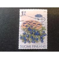 Финляндия 2006 черника