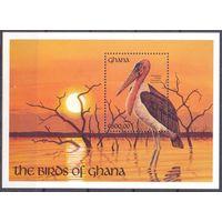 Гана фауна