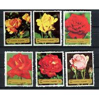 Фуджейра - 1972 - Розы - [Mi. 1251-1256] - полная серия - 6 марок. MNH.
