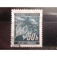 Богемия и Моравия 1940 стандарт, листья