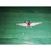 Нагрудный знак специалиста инженерно-авиационной службы ВВС СССР
