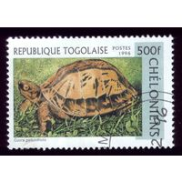 1 марка 1996 год Того Тортилла 2484