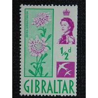 Гибралтар. Флора.