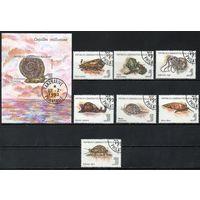 Моллюски Мадагаскар 1993 год серия из 7 марок и 1 блока