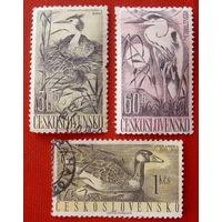 Чехословакия. Птицы. ( 3 марка ) 1960 года.