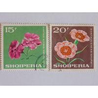 Албания. Флора
