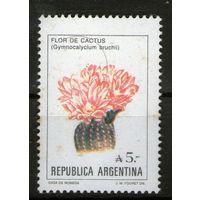 Аргентина. Чистая. Лот-55