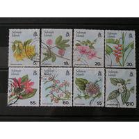 Соломоновы Острова, Цветы (2)