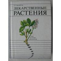 Шамрук - Лексарственные растения: сбор, заготовка и применение