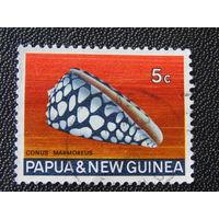 Папуа Новая-Гвинея. Морская ракушка.