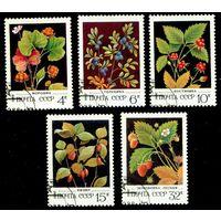 Ягоды СССР 1982 год серия из 5 марок