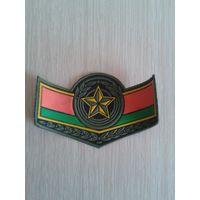 Нашивка нарукавная сержантская ВВ МВД Беларуси, разновидность