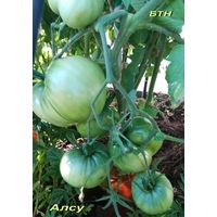 Семена томата Алсу