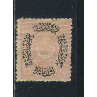 Турция Османская Имп 1876 Вып Дюло Тип VI Стандарт  #27*