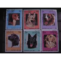 Марки - фауна, Лаос, собаки