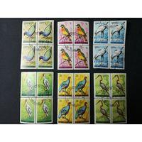 Бурунди 1965. Птицы. 15 квартблоков. Полная серия