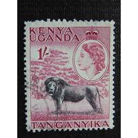 Кения - Уганда - Танганьика 1954г. Лев.