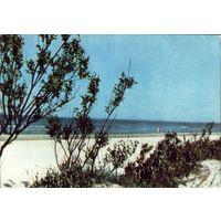 Лиепая - Пляж