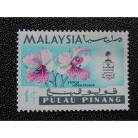 Малайские штаты. Флора.