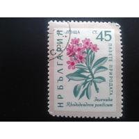 Болгария 1960 цветы