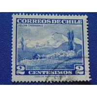 Чили 1962 г. Флора.