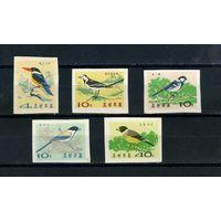 Корея 1965г. птицы, без зубцов, 5м.