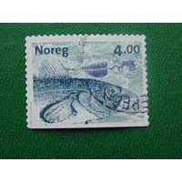Норвегия 1999г. Рыбы.