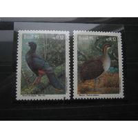 Марки - Бразилия 1995 фауна птицы