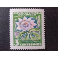Уругвай 1954 цветок