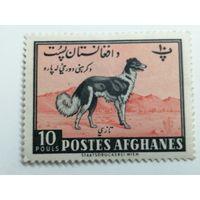 Афганистан 1961. День сельского хозяйства - Животные