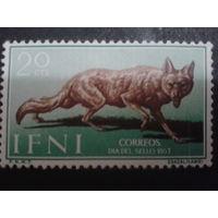 Ифни 1957 Колония Испании фауна