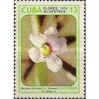 Марка из серии цветы Куба. 1974. МИ:1999
