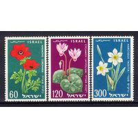 1959 Израиль. К 11-ой годовщине независимости. Цветы