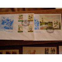 Беларусь 1996 КПД Флора Лекарственные растения (2 конверта)