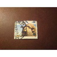 Южно-Африканская Республика 1972 г.Овца Меринос.