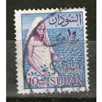 Судан. Гашеная. (1). Лот-2