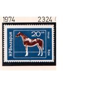 Болгария-1974,(Мих.2324)  ** , Лошади
