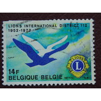 Бельгия 1977г. Птицы
