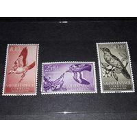 Испанская Сахара 1958 Фауна Птицы 3 чистые марки