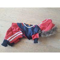 Одежда для собак. Комбинезон Doggy Dolly